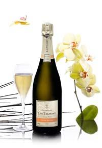 Champagne de Telmont Vintage