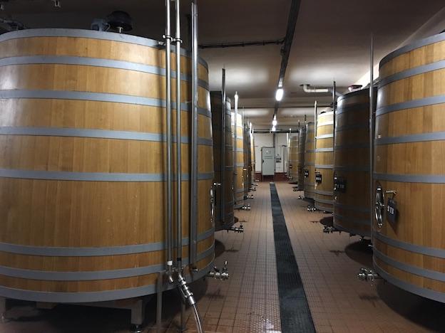 Cuves en bois utilisées pour la première fermentation des terroirs orientés au Nord afin de leur donner plus de texture via une ouverture avec le bois