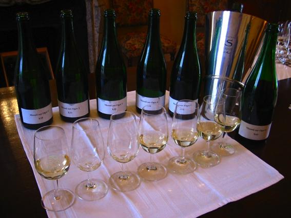 Vins Clairs Champagne Salon Delamotte