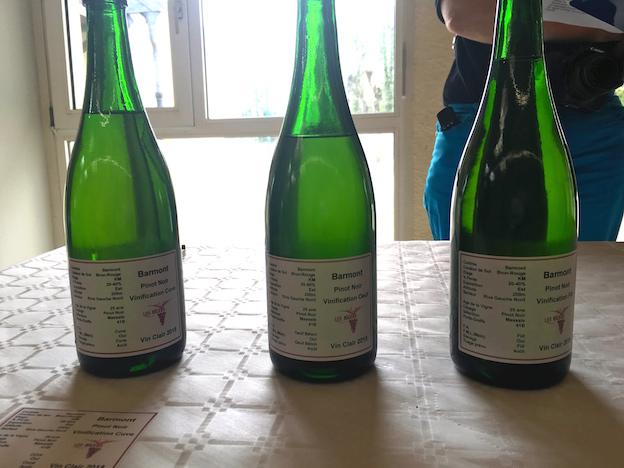 Riceys vins clairs 2015 : vinification différente de Pinots Noirs de la parcelle Barmont